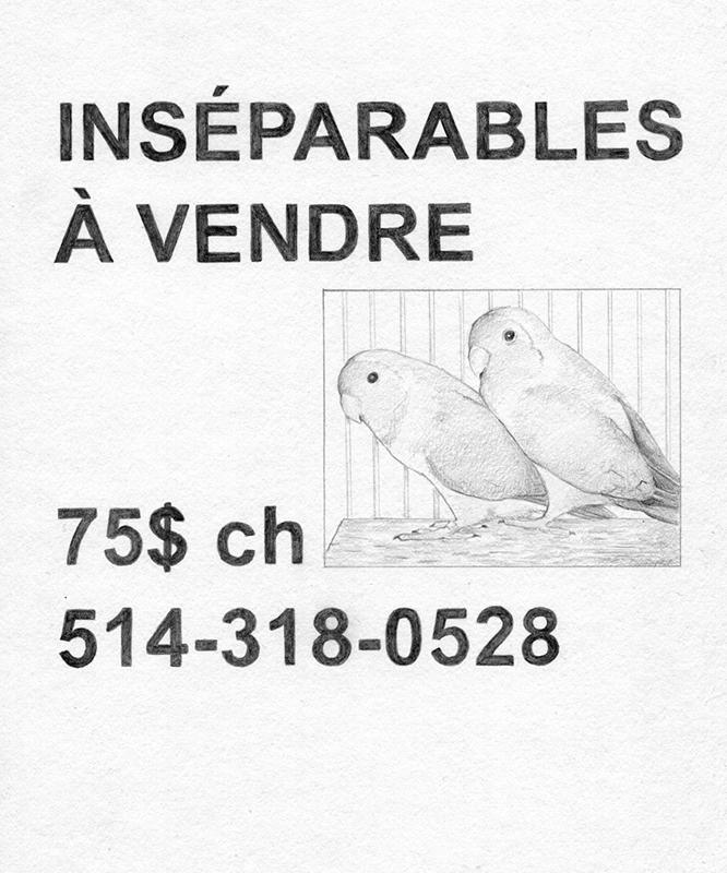 http://charles-antoine.ca/files/gimgs/19_dessin010---copie_v2.jpg
